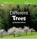 EOYO_Different Trees