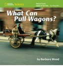 EOYO_What Can Pull Wagon